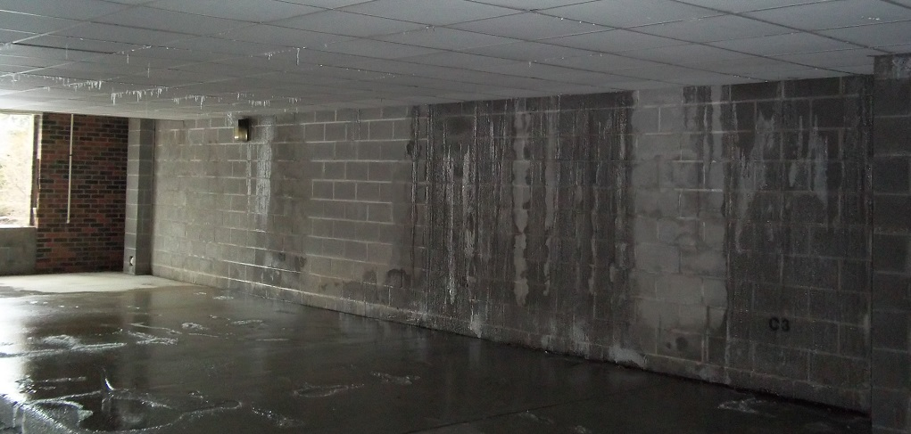 When to call the water damage specialists