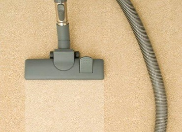 Professional carpet cleaning vs. DIY? That is the question